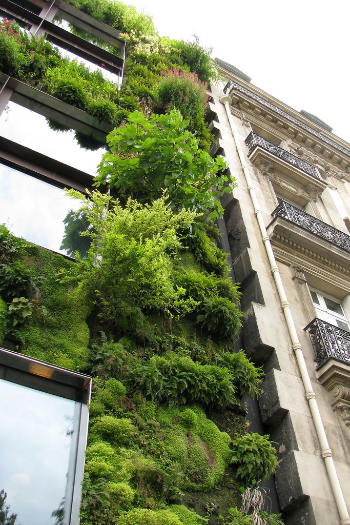 parisgreenwall by Beach650 is licensed under CC-4235651497_7c84aa1535_b